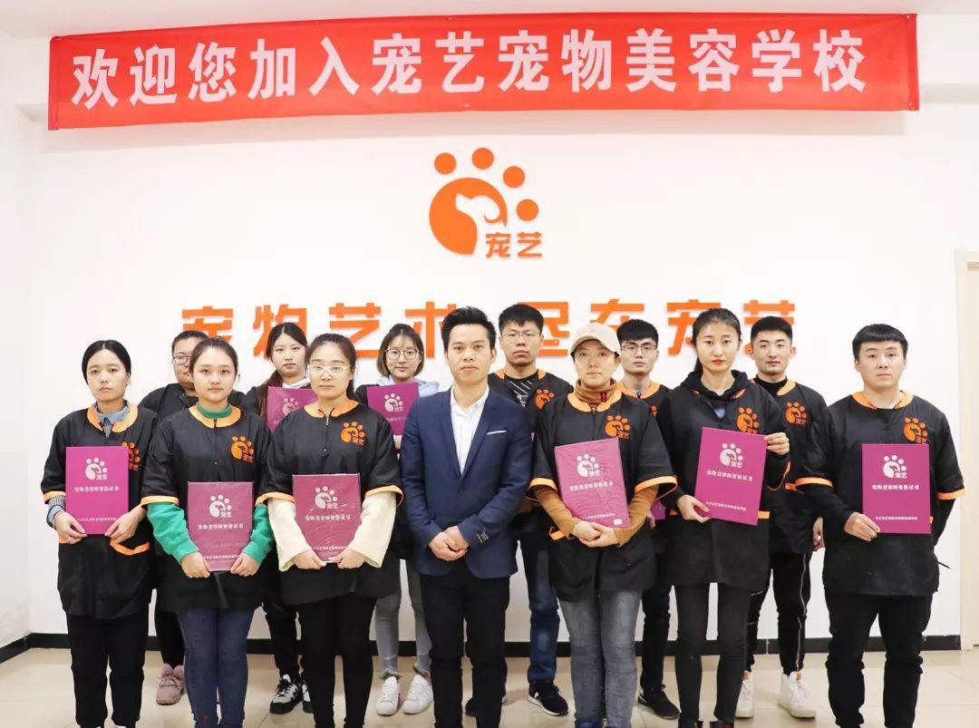 上海|重庆宠物美容培训学校|班_宠物美容师-顶新宠物美容培训学校