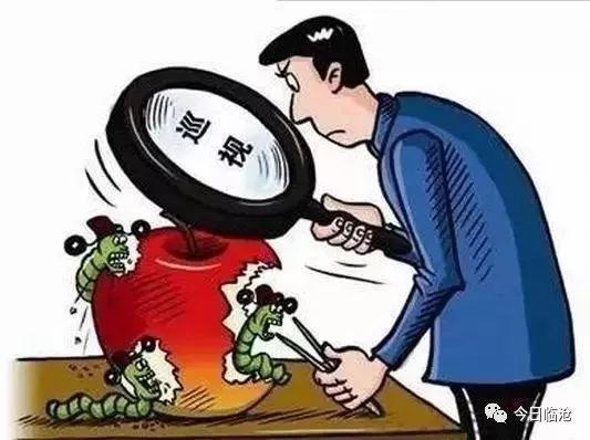 廉洁临沧丨全覆盖督查巡查!凤庆:处置880个扶贫领域问题线索