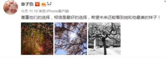 荣盛国际2:潮流图片被章