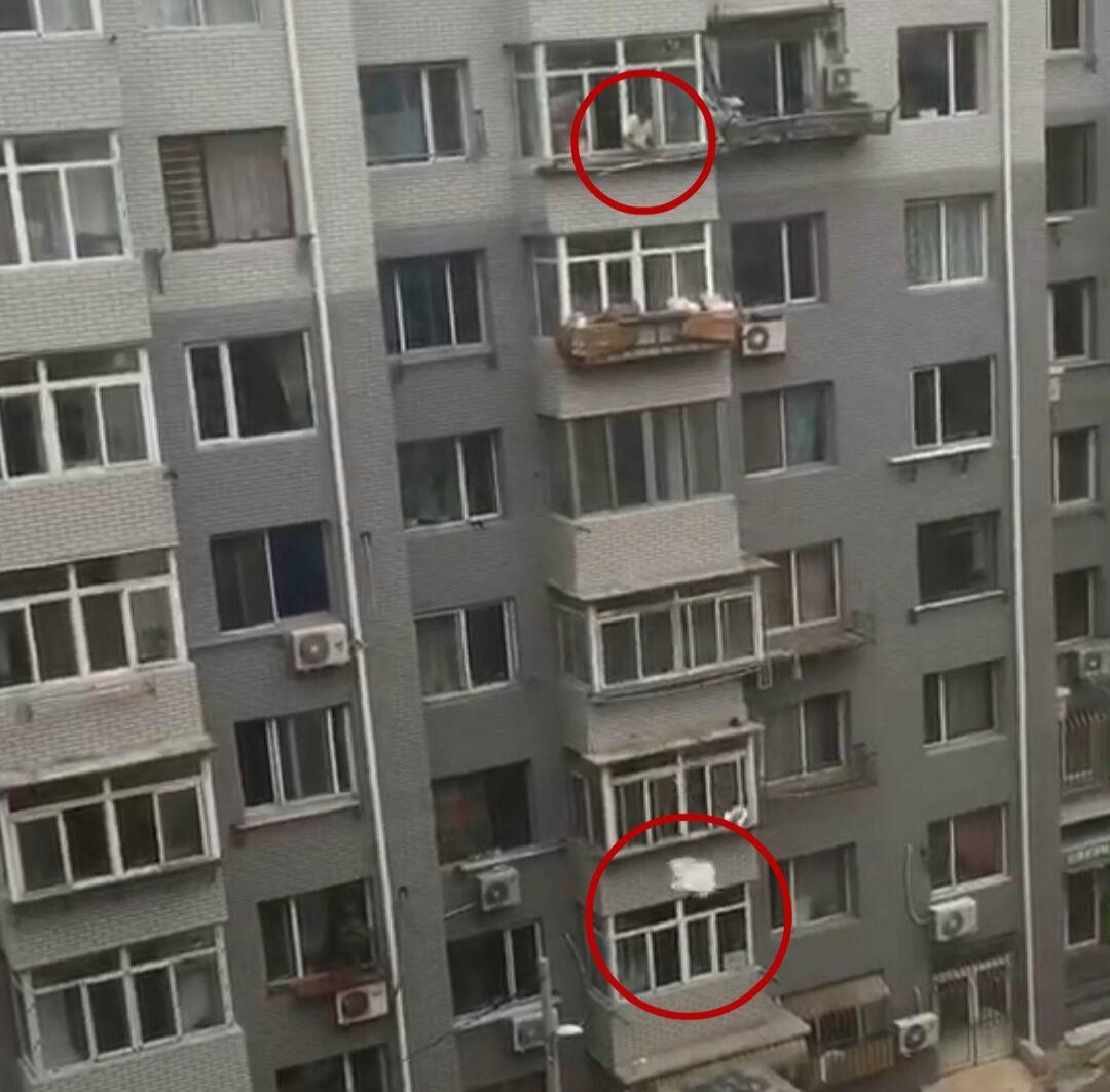 窗外突然传来巨响,女子拍下这样一幕...视频曝光!|新闻日志