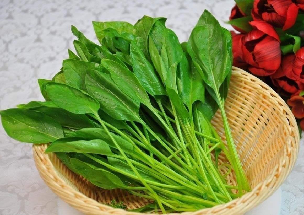 女性衰老来临前,这些蔬菜或许能帮忙延缓衰老,你吃对了吗?