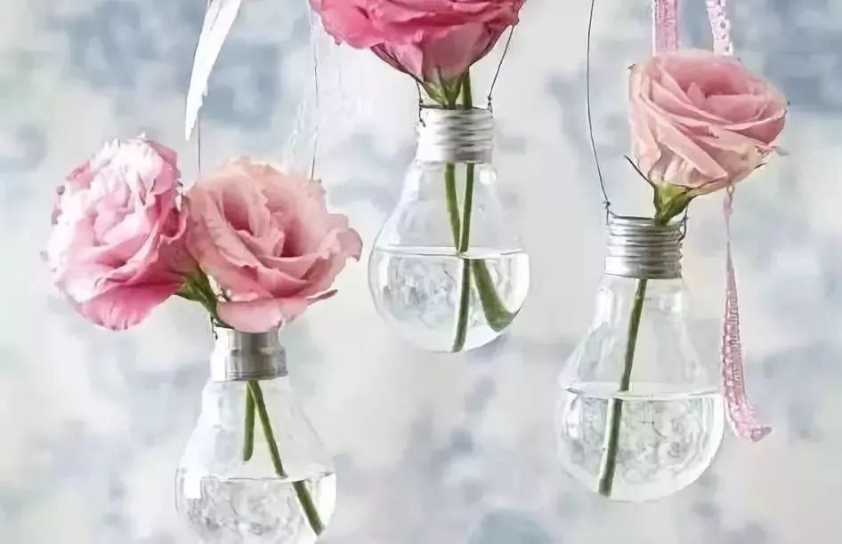灯泡花瓶  灯泡最适合diy成小花瓶了,简简单单地系上一根绳子,灌上水