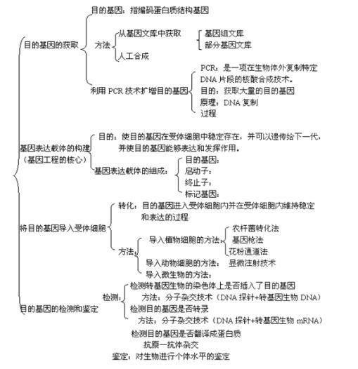 """黄冈seo_高中生物知识点:走进""""基因工程"""""""