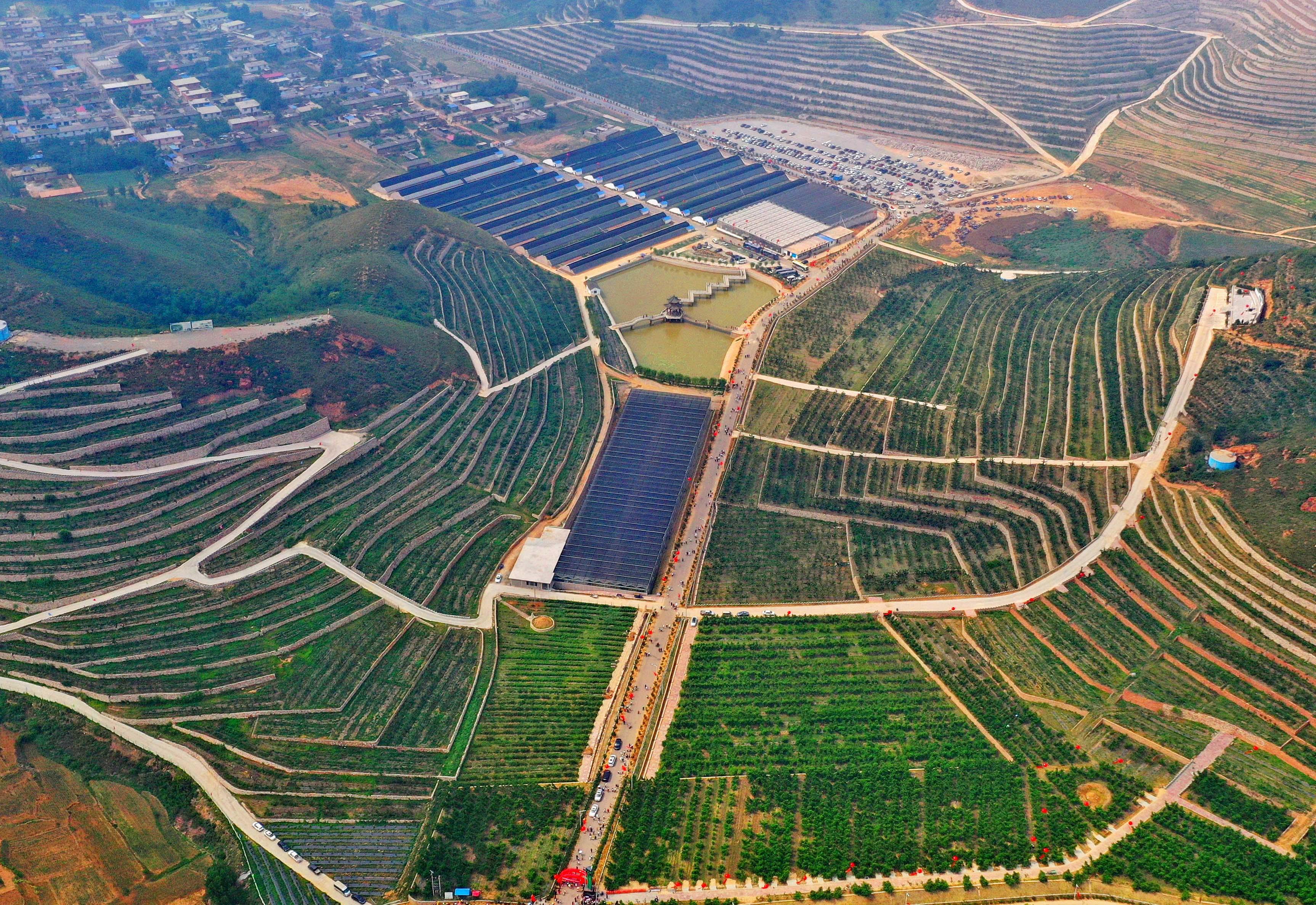 河北滦州:荒山变身富农生态园