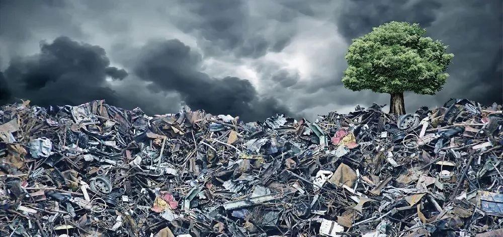 【垃圾分类】垃圾分类新规今起实施!你关心的热点问题解答来了→