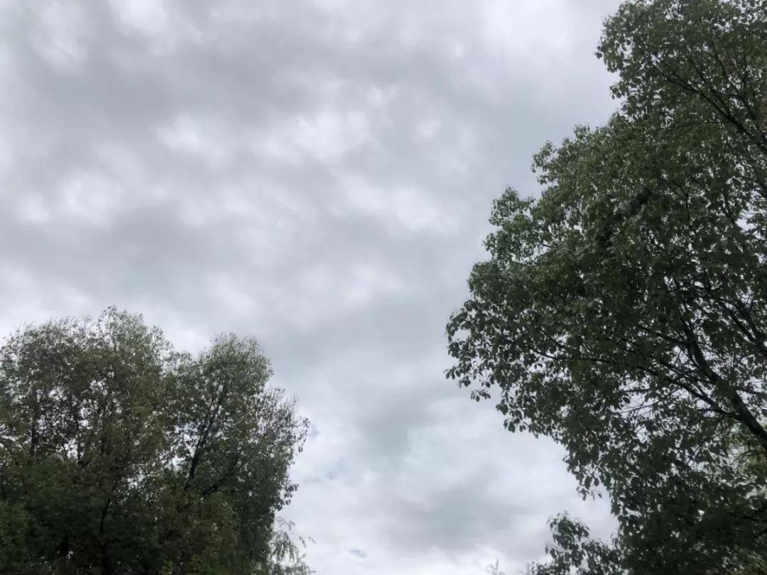 大暴雨出梅湖州本周最新天气情况来了