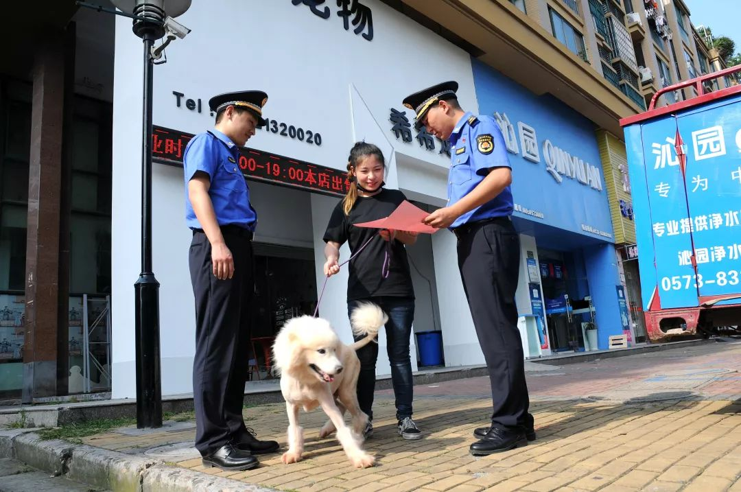 35类犬将禁养、犬类禁止进入这些区域……最新养犬管理条例今日开始实施!