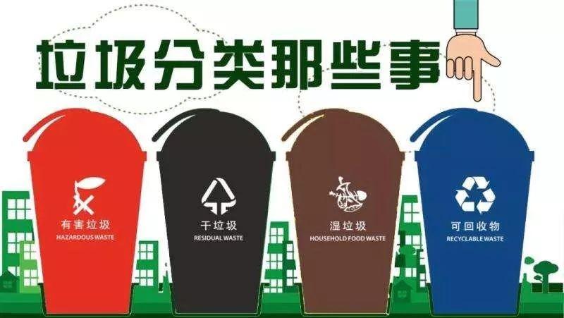 还在对干、湿垃圾傻傻分不清?听上海市人大常委会法工委负责人怎么说