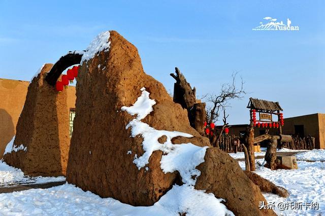那个雪花飘 飘 的冬季,我来到了塞外的宁夏