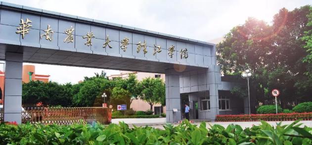 华南农业大学珠江学院2019年专插本专业汇总表