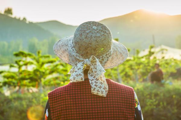 农民每个月100元能干什么足够养老吗