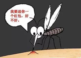 【生活】穿越千年的人蚊大战:中国哪里的蚊子最猖獗