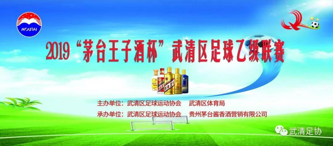 """2019茅台王子酒杯""""武清区足球乙级联赛 第10轮战报"""