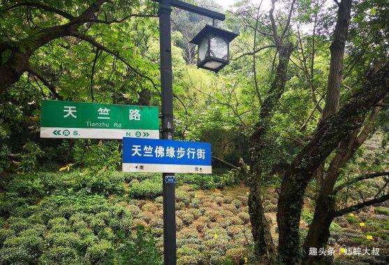 杭州最美步行街,工艺品不输河坊街,老杭州人才知道的长寿之路!