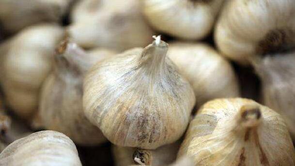 大蒜放久了易腐烂、发芽,营养师教你一招,让大蒜3个月不变坏