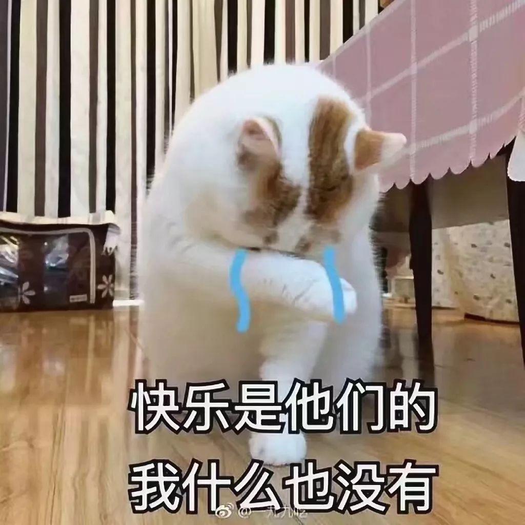 押尾猫在哪发布视频