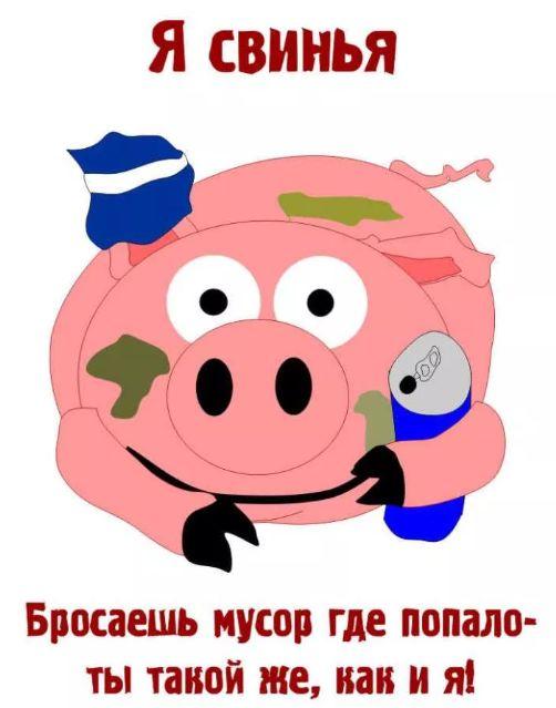 diy粘土手工制作猪