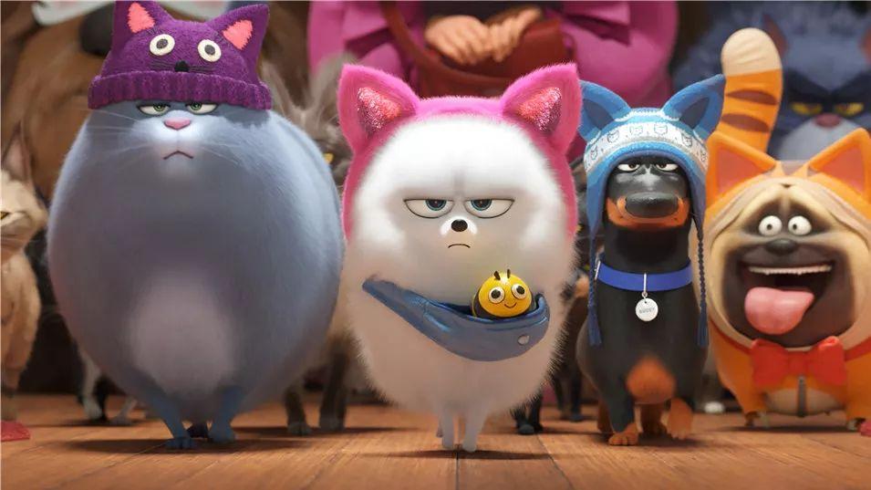 撸撸影院先锋影音_想在线撸猫撸狗撸兔?试试这次的气味电影《爱宠大机密