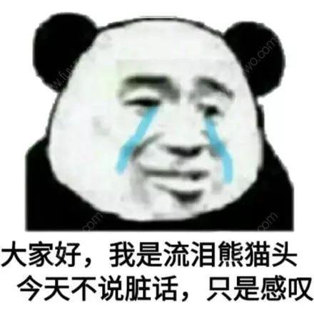 大家好我是流泪熊猫头本日不说脏话只是感慨 一同斗图啦心情包 斗图狗