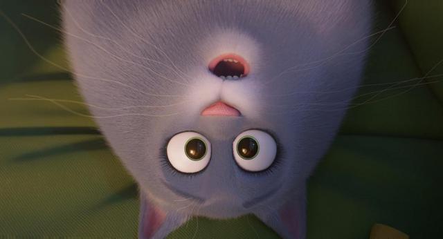 第三条是啾啾(gidget)要拯救麦克小蜜蜂玩具的救援故事,并在电影的后图片
