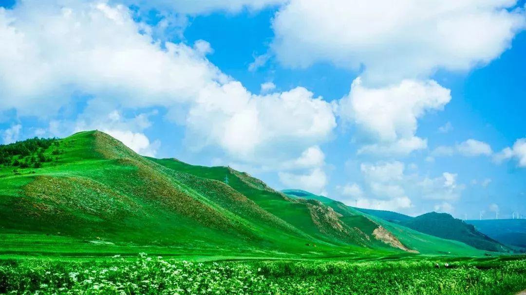 天津周边就有10个大草原!自驾走起游戏王破灭大邪神攻略图片