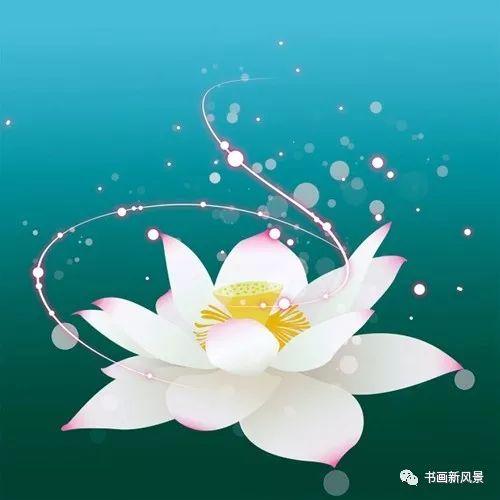 心有莲花,岁月染香