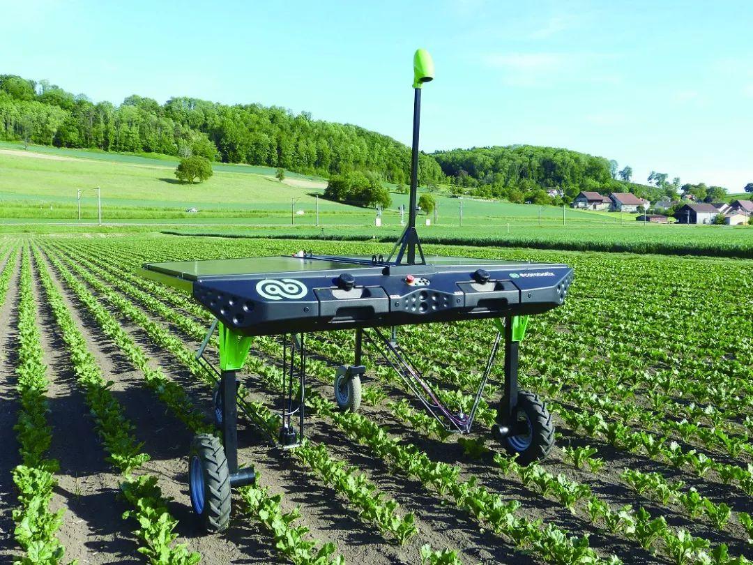 瑞士的除草机器人能减少人们对除草剂的依赖