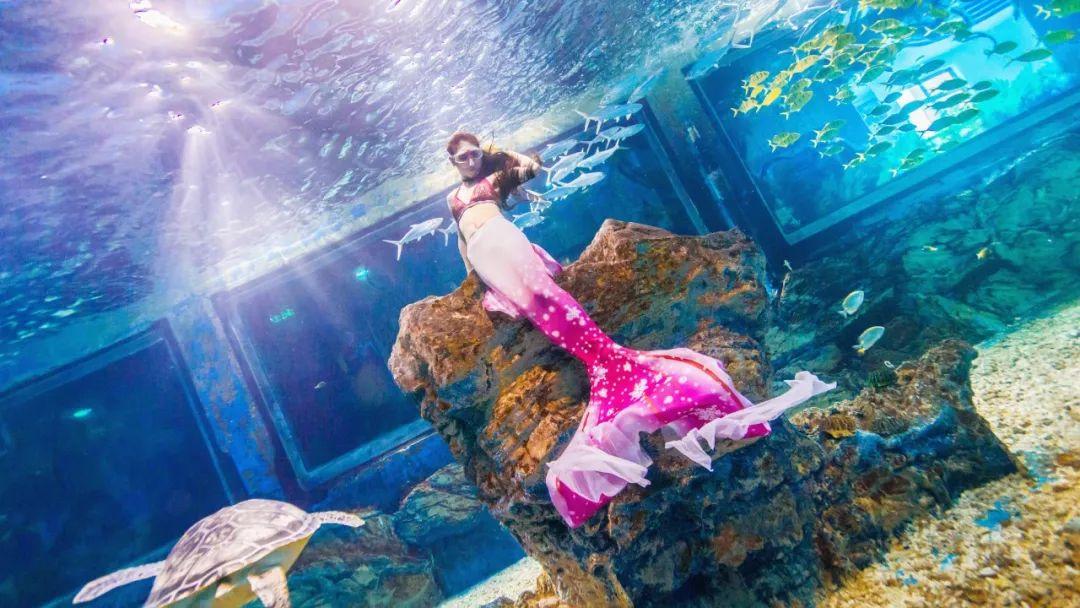 1元秒杀欢乐谷&玛雅福利水年度公园!连续3天!女校性感海滩图门票日本图片