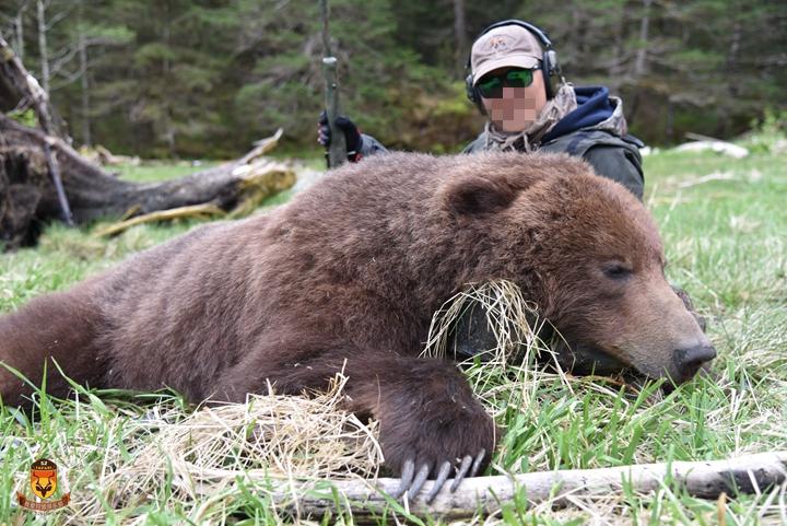 rihantoukuidianying_【狩猎游记】2019年5月美国阿拉斯加游艇熊狩猎团