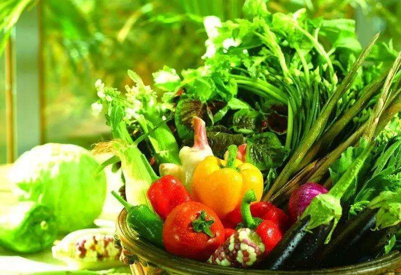 蔬菜价格下跌!巴彦淖尔6月份农畜产品价格行情公布