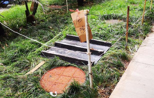 花圃暗藏吃人井盖 下楼捡东西11岁女孩命殒化粪池