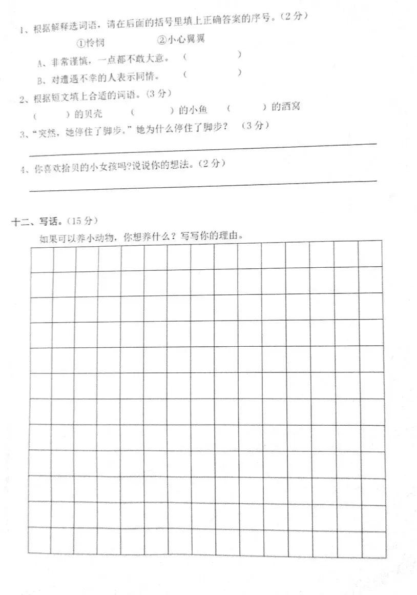 七年级语文期中考试卷