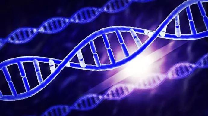 人类原本不属于太阳系?科学家发现人类80%的基因有可能被锁死