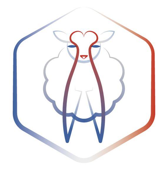 今年,一年一度的论坛剪世界学习第一次来到了法兰西,在一个叫做勒多拉大赛羊毛初中生图片