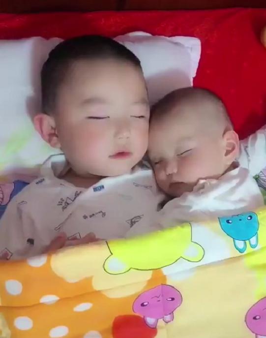 哥哥哄弟弟一起睡着后,妈妈掀开被子看到这画面,网友:太有爱了