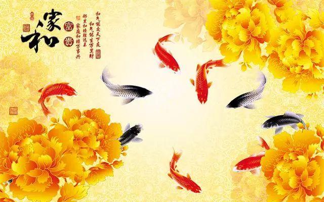 十三人口福星_天选福星塔姆图片(3)