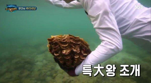 韩国SBS《丛林的法则》节目组在泰国捕食濒危保护动物一事道歉