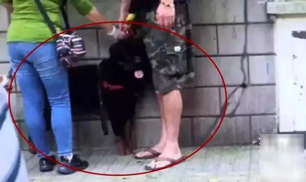 大狗咬伤日籍女子,网友却更关注:这是禁养犬,咋办的狗证?