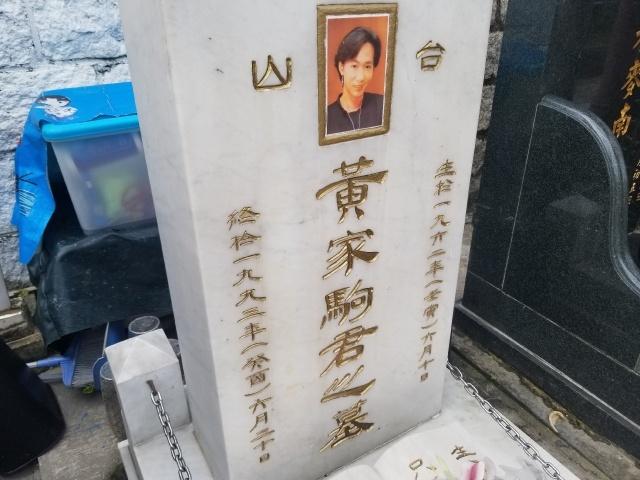 黄家驹墓碑被刻字 许大大是谁还刻上家人的名字,鞠萍老公