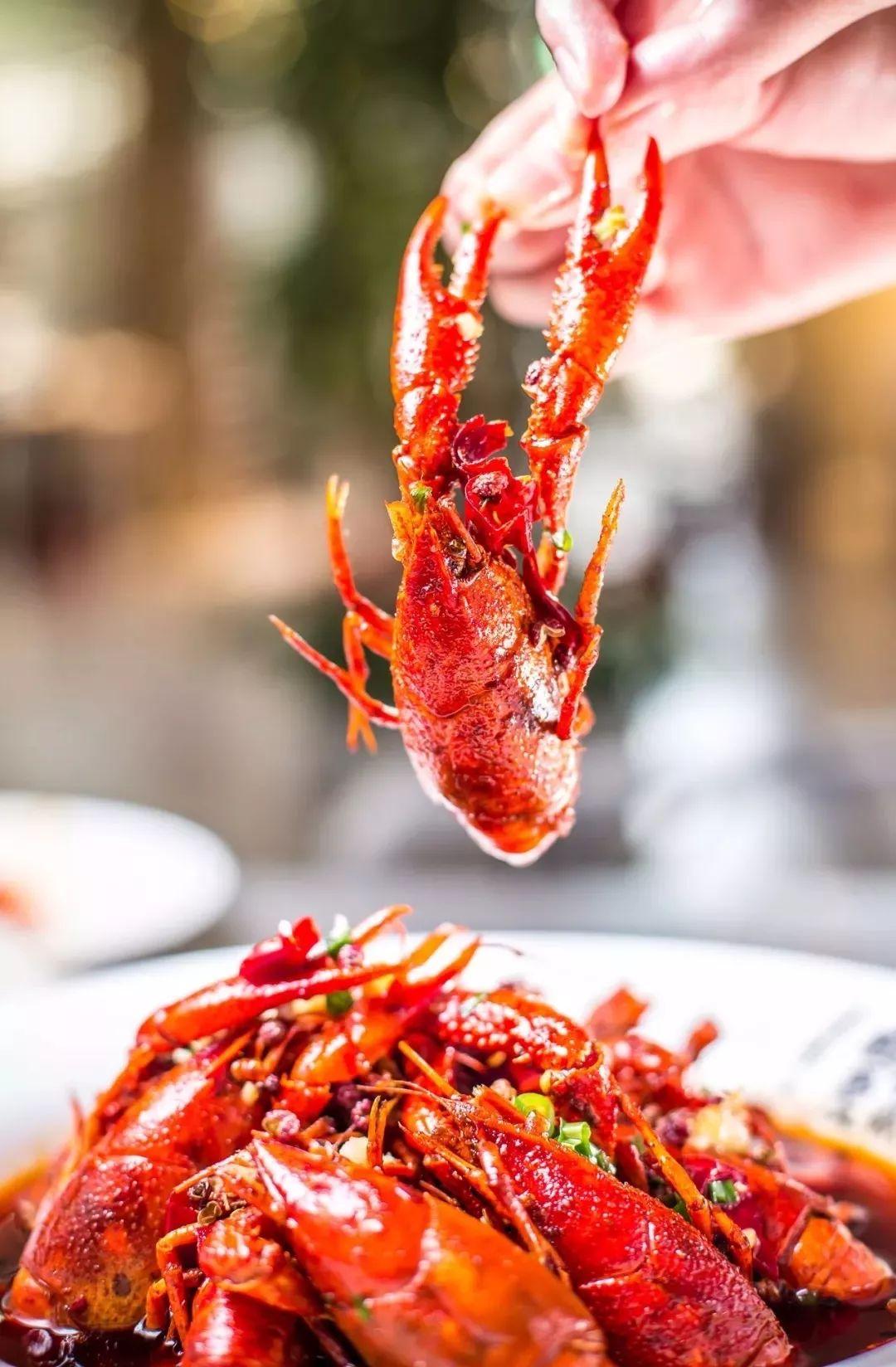 深圳人的暑假福利 9.9开吃小龙虾 海鲜大餐