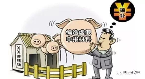 生猪补贴拉下一个市31名官员,涉案金额超7000万