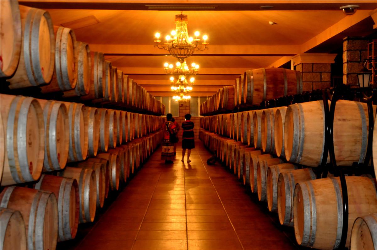 在世界葡萄酒种植的黄金地带学品酒_宁夏