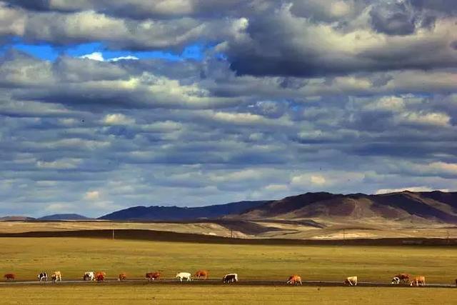 这么美的内蒙古,请假也要去!