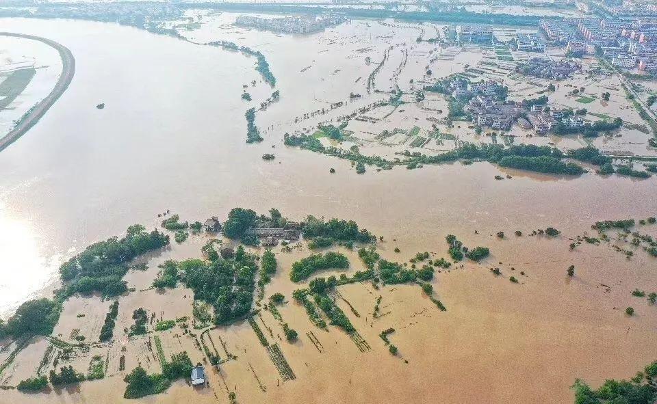 众志成城 | 新余农商银行防汛救灾在行动!