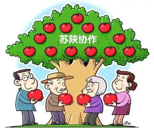 快来!旬阳苏陕协作定向职业培训即将开班,你学习,政府买单!