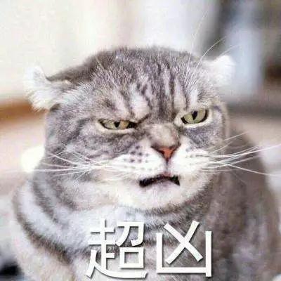 星座女神   热情又自信,Ta就是一只可爱的粉红豹 chunji.cn