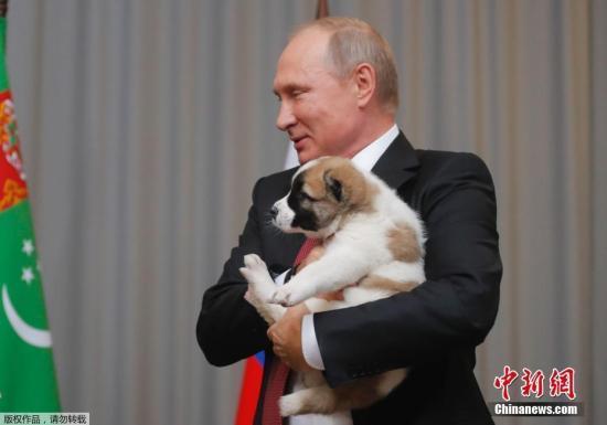 来自总统的礼物:俄自闭症男孩获普京赠送宠物狗