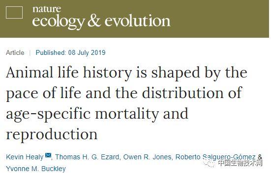 生命周期之谜:科学家绘制出121种动物的生命周期 v118.com
