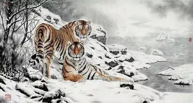 唐坚 不激不厉,画出野生动物的个性