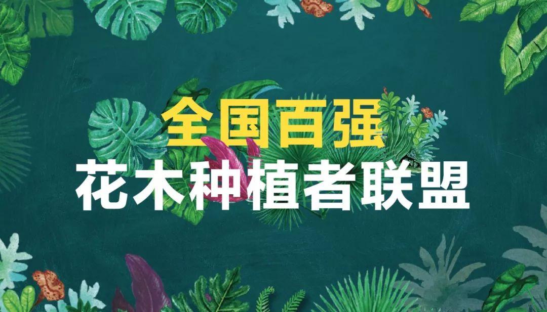 全国百强花木种植者联盟